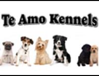Te Amo Kennels