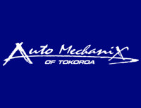 Auto Mechanix Ltd