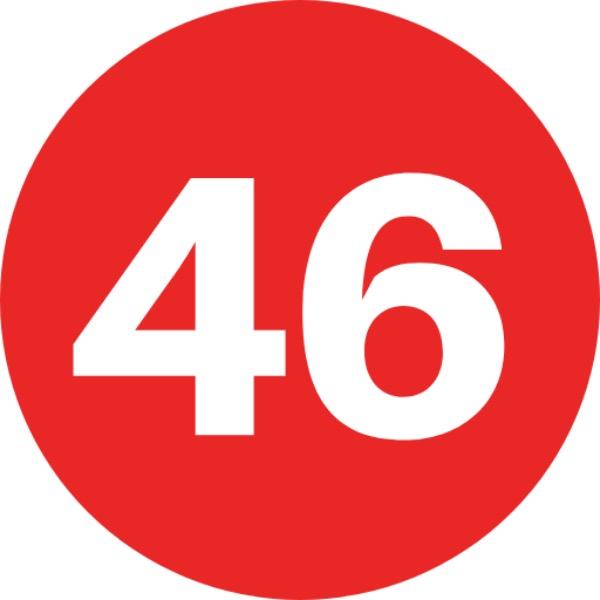 Studio46 Digital Marketing Consultant