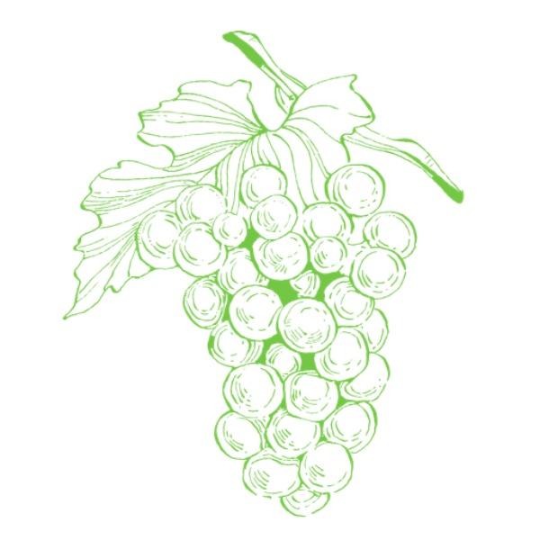 Vinifera Foods Limited