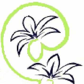Blissful Organic Skincare