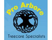 Pro Arbore