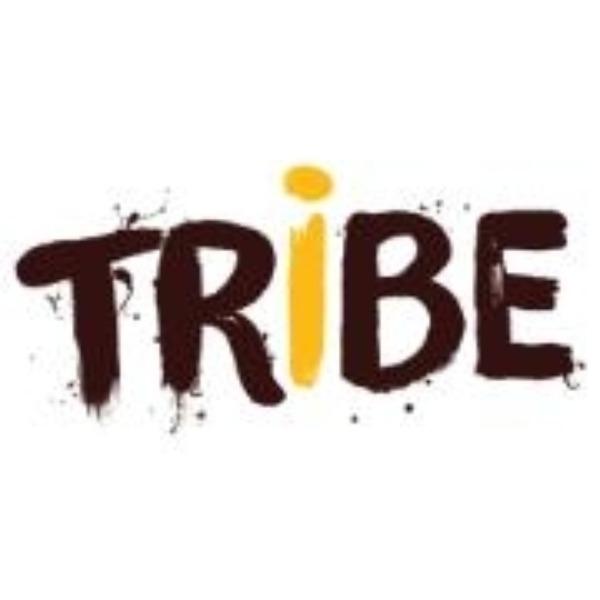 Tribe Recruitment Agency