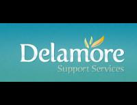 Delamore Support Services Ltd
