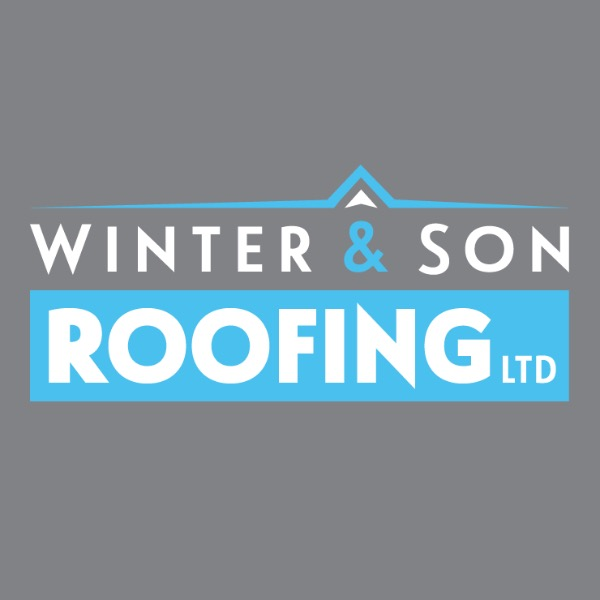Winter And Son Roofing