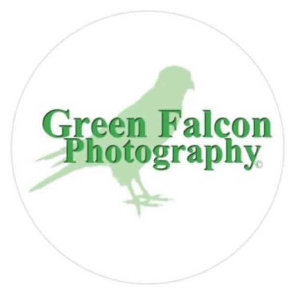Green Falcon Photography