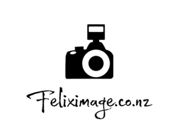 Felix Image Wedding Studio