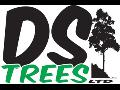 D S Trees LTD