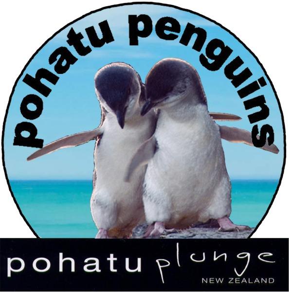 Pohatu penguins